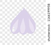 garlic vector icon isolated on...   Shutterstock .eps vector #1166199958