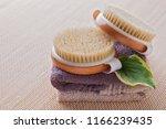 brush for dry body massage  ... | Shutterstock . vector #1166239435