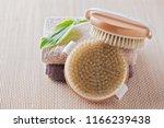 brush for dry body massage  ... | Shutterstock . vector #1166239438