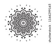 beautiful vector circular... | Shutterstock .eps vector #1166299165