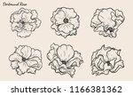 rose vector set by hand drawing.... | Shutterstock .eps vector #1166381362