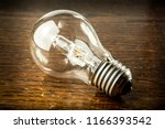 halogen bulb is lying   Shutterstock . vector #1166393542