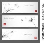 banners with dragonflies ...   Shutterstock .eps vector #1166434732