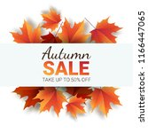 autumn leaves. bright colourful ... | Shutterstock .eps vector #1166447065