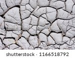texture  background of dry... | Shutterstock . vector #1166518792