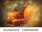 autumn little pumkin with... | Shutterstock . vector #1166566582