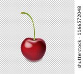 cherry isolated transparent...   Shutterstock . vector #1166572048