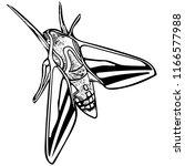 black and white vector art of...   Shutterstock .eps vector #1166577988