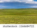 xinjiang ili kalajun grassland  ...   Shutterstock . vector #1166684722
