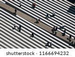 aerial view of people crossing... | Shutterstock . vector #1166694232