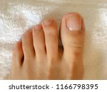 closeup photo of woman s feet... | Shutterstock . vector #1166798395