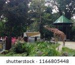 kuala lumpur  malaysia  august... | Shutterstock . vector #1166805448