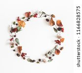 autumn composition. wreath made ... | Shutterstock . vector #1166828575