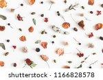 autumn composition. pattern... | Shutterstock . vector #1166828578