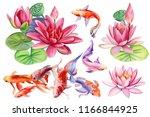 beautiful flowers pink lotus... | Shutterstock . vector #1166844925