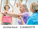 senior woman in physiotherapy... | Shutterstock . vector #1166863978