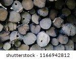 firewood for the winter  stacks ... | Shutterstock . vector #1166942812
