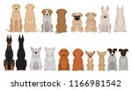 set of dogs of different breeds ... | Shutterstock .eps vector #1166981542