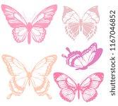 beautiful pink butterflies ... | Shutterstock .eps vector #1167046852