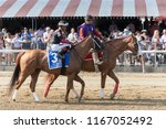 Small photo of Saratoga Springs, NY, USA - August 25, 2018: Whitmore ridden by Ricardo Santana, Jr. in the post parade for the Forego Stakes on Travers day August 25, 2018 Saratoga Springs, NY, USA