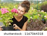 portrait of beautiful female...   Shutterstock . vector #1167064318
