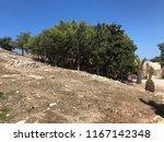 greece crete 2018 venetian... | Shutterstock . vector #1167142348