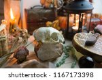 a skull on a natural crystal  a ... | Shutterstock . vector #1167173398