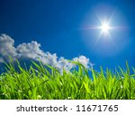 green grass against the blue sky | Shutterstock . vector #11671765