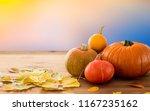Halloween  Harvest And Autumn...
