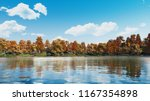 calm forest lake or pond with... | Shutterstock . vector #1167354898