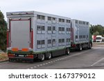 a modern cattle transporter... | Shutterstock . vector #1167379012