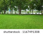 Landscape Of Grass Field With...