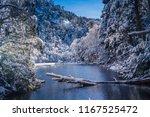 huerquehue national park  pucon ... | Shutterstock . vector #1167525472