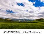 landscape of the field of wheat ...   Shutterstock . vector #1167588172
