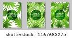 tropical paradise leaves vector ... | Shutterstock .eps vector #1167683275