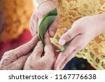 the process of giving the betel ... | Shutterstock . vector #1167776638