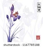 iris flower hand drawn with ink ...   Shutterstock .eps vector #1167785188