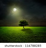 Night And The Moon On A Green...