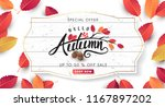 autumn sale background layout... | Shutterstock .eps vector #1167897202