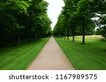 a straight path in the nature | Shutterstock . vector #1167989575