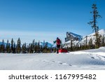skiing on the wintertime on the ... | Shutterstock . vector #1167995482
