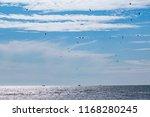 landscape of the mediterranean...   Shutterstock . vector #1168280245