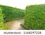Green Maze In The Secrets Park