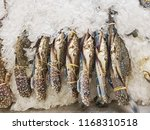 fresh horse crab | Shutterstock . vector #1168310518