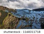 yuanyang rice terraces in... | Shutterstock . vector #1168311718