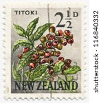Small photo of NEW ZEALAND - CIRCA 1960: A stamp printed in New Zealand shows Titoki flower (Alectryon excelsum), circa 1960