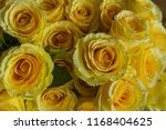 beautiful flower decorate... | Shutterstock . vector #1168404625