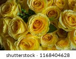 beautiful flower decorate... | Shutterstock . vector #1168404628