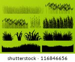 plants  grass and flowers... | Shutterstock .eps vector #116846656