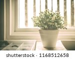 flowers and white pots in the... | Shutterstock . vector #1168512658